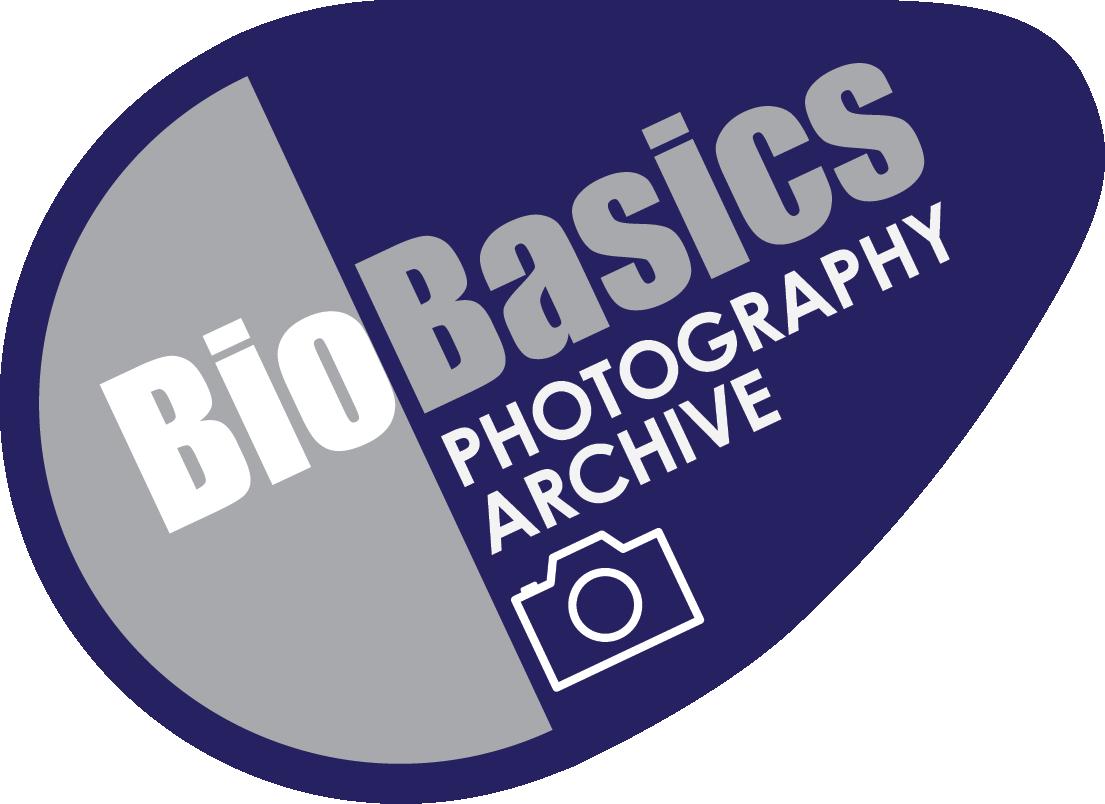 BioBasics_WEB_Logo_PHOTO-ARCHIVE